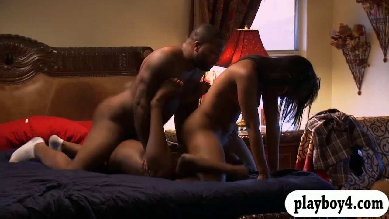 Sensual ebony couple