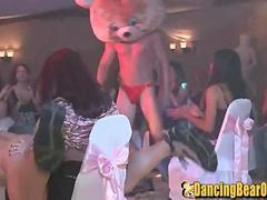 Dancing Bear Party for the Wedding Shower