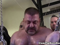 Hoisted bear barebacked in gangbang by guys