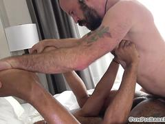 Bald bear doggystyle assfucking ebony stud